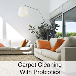 Carpet-Cleaning-With-Probiotics